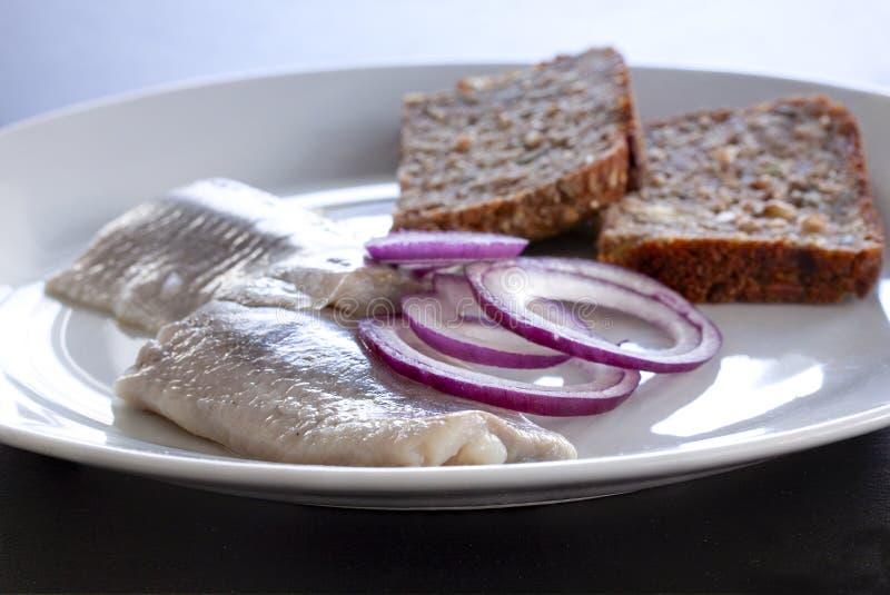 Frische Salzheringe auf einer Platte mit homebaked rustikalem gesätem Roggenbrot und Zwiebelringen Skandinavische Nahrung Abschlu lizenzfreie stockfotografie