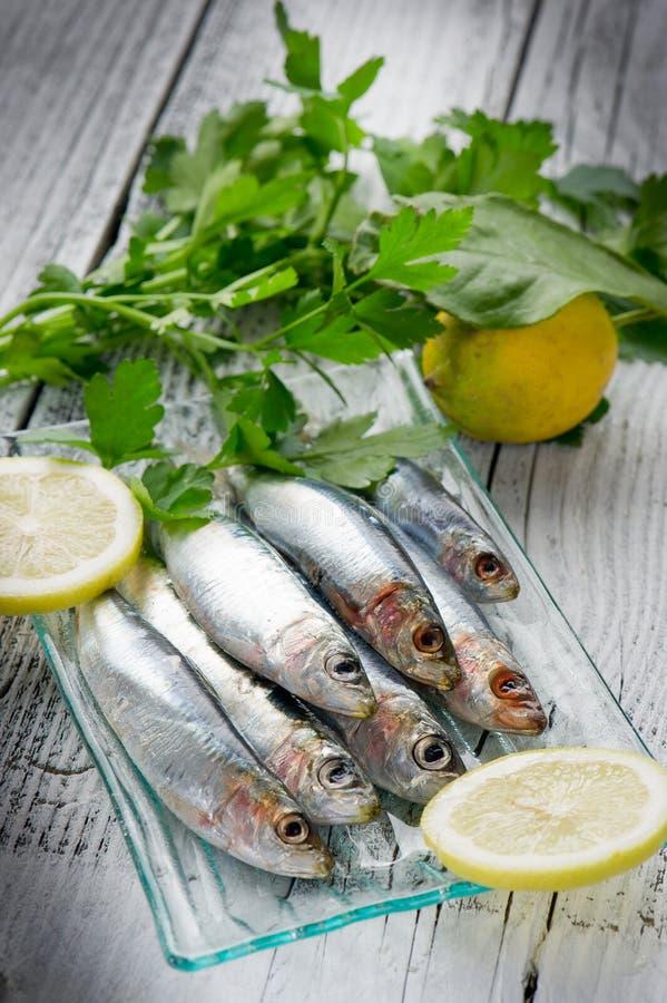 Frische Sardinen mit Zitrone lizenzfreies stockfoto