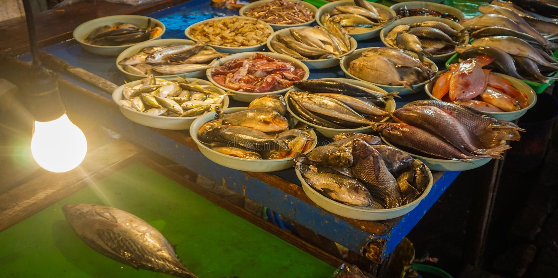 Frische Seefische angezeigt auf weißem Plastikeimer Foto eingelassenes Jakarta Indonesien lizenzfreie stockfotografie