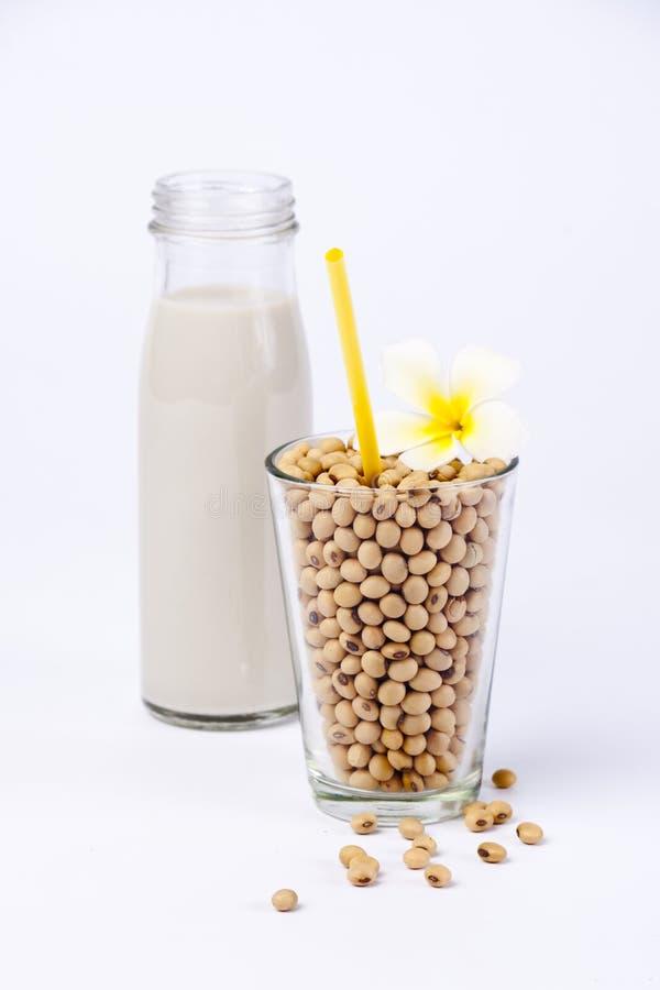 Frische Sojabohnenölmilch und rohe Sojabohnenölbohne lizenzfreies stockfoto