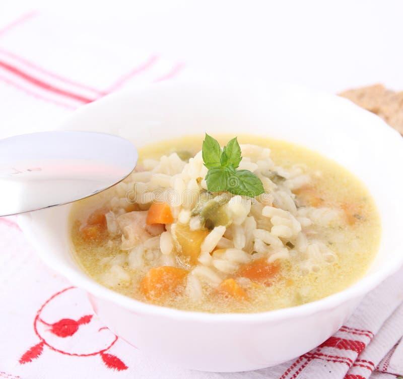 Frische Suppe mit Huhn und Reis lizenzfreie stockfotografie