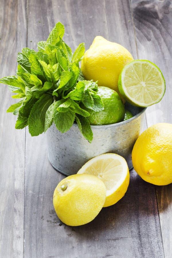 Frische tadellose Blätter mit Kalk und Zitrone für das Vorbereiten von mojito stockfoto