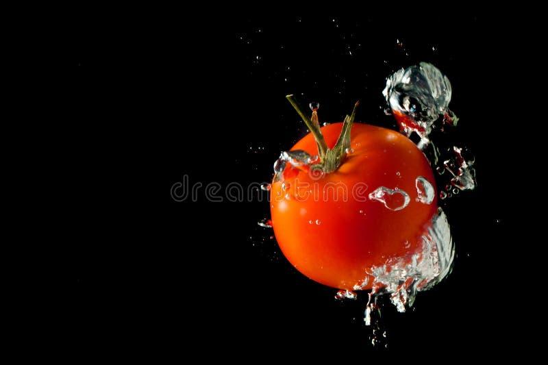 Frische Tomate fallen gelassen in Wasser lizenzfreie stockfotografie