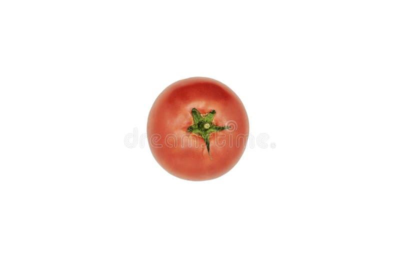 Frische Tomate lokalisiert Wei?er Hintergrund Tomate mit Ausschnitts-Pfad stockbilder