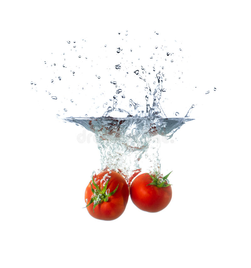 Frische Tomaten-Früchte, die in Wasser sinken lizenzfreie stockfotos