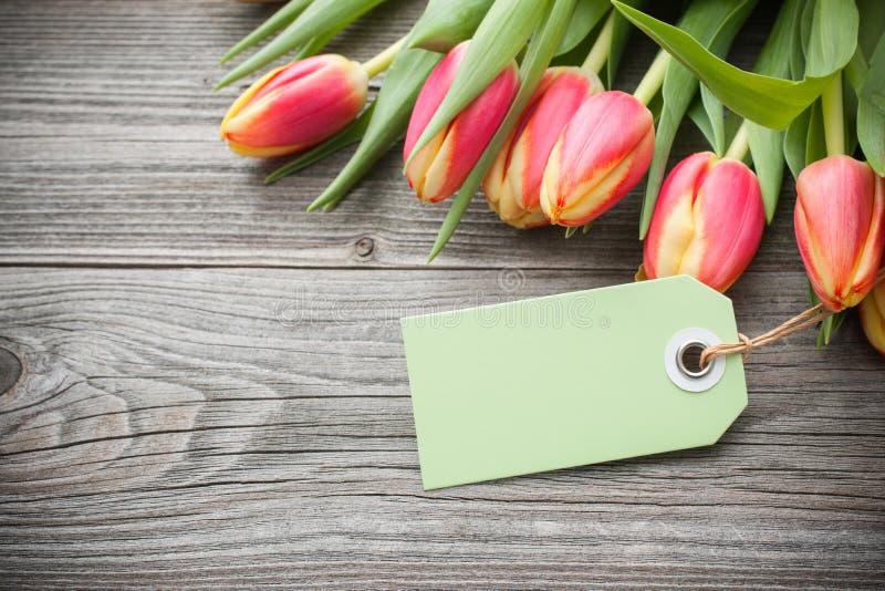 Frische Tulpen und Tag stockfotografie