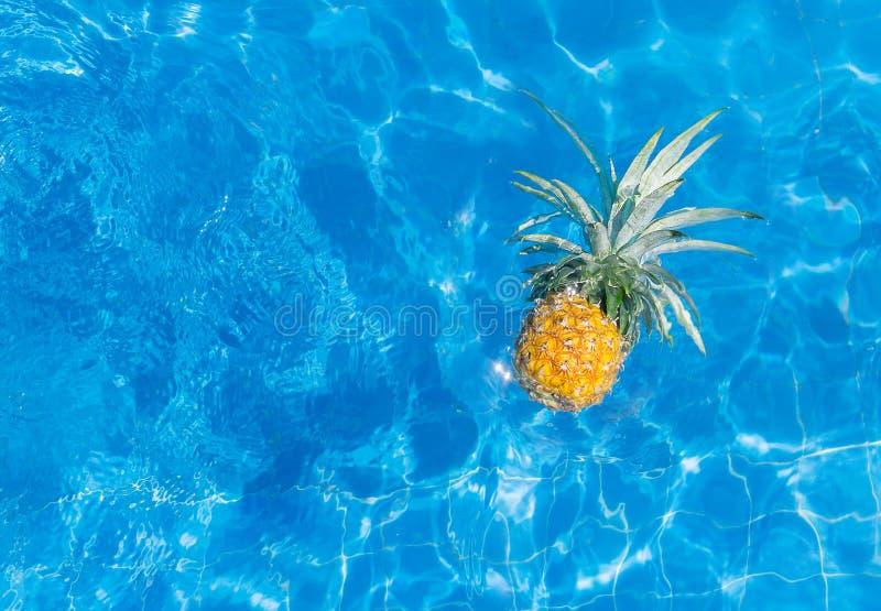 Frische vibrierende Ananas in der Sonnenbrille im Swimmingpool Gesunder Lebensstil, Reise Textraum lizenzfreie stockfotos