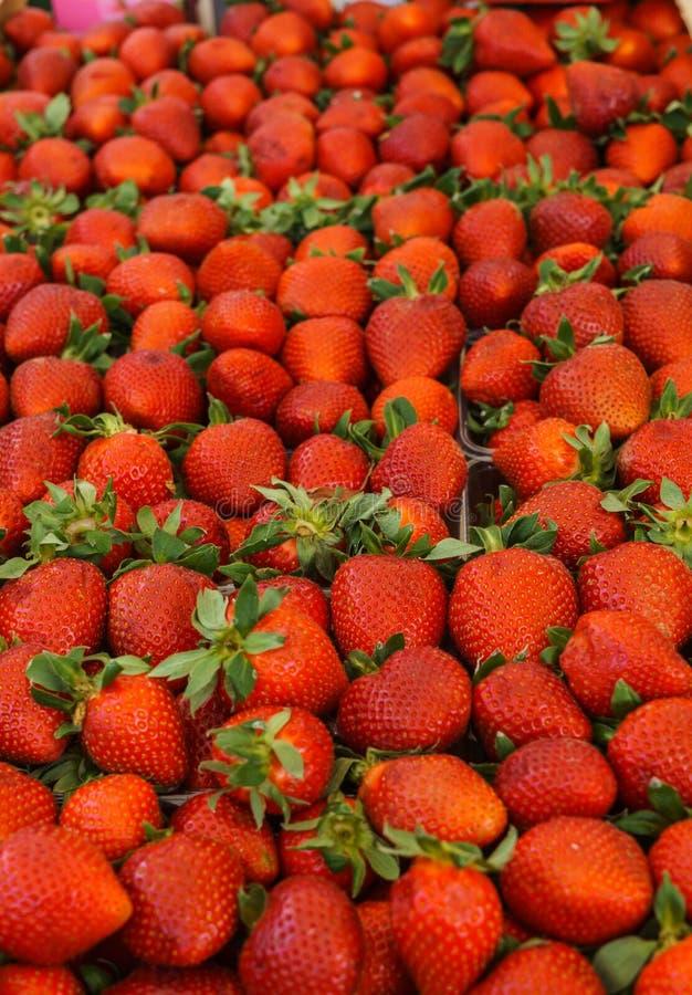 Frische, wohlriechende Erdbeeren in den Behältern am Landwirtmarkt stockbild