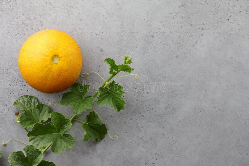Frische yelllow Melone und blühende Rebe auf grauem Hintergrund stockfotos