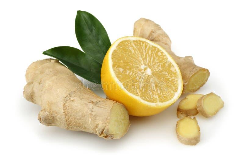 Frische Zitrone mit Ingwer lizenzfreies stockfoto