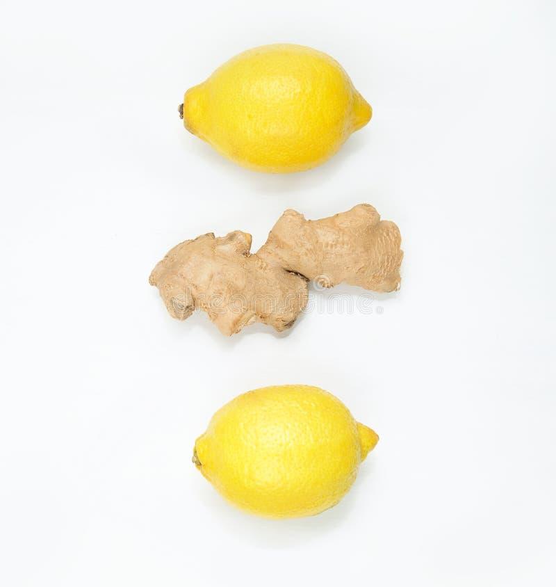 Frische Zitronen und Ingwer stockbild