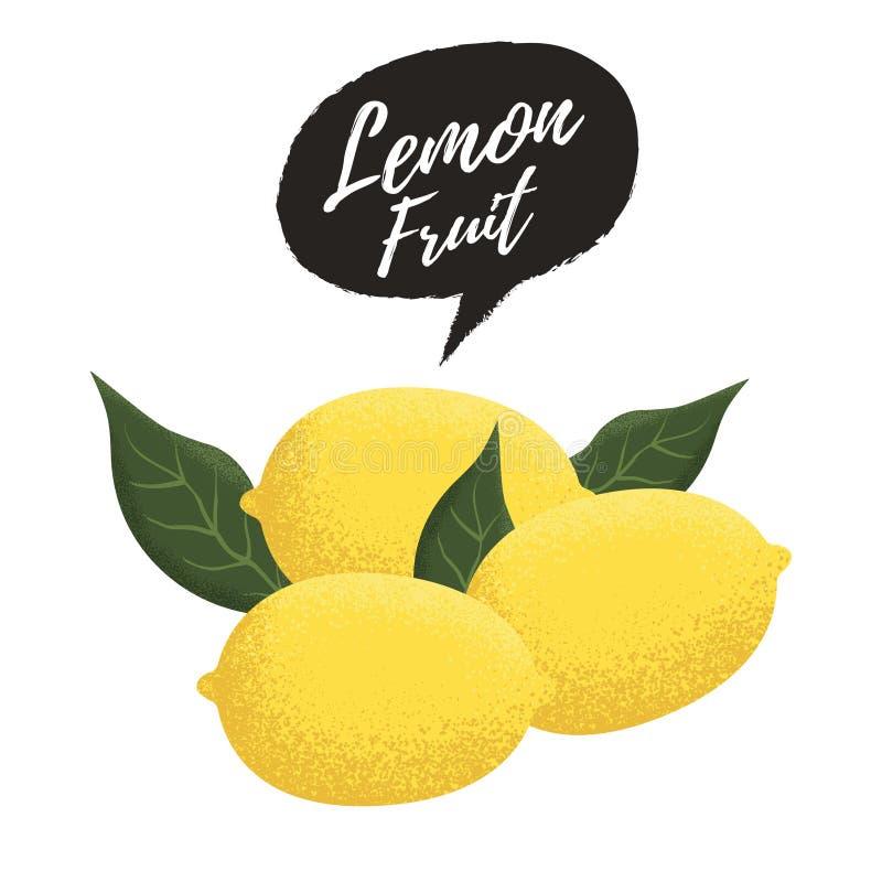 Frische Zitronenfrucht lizenzfreie abbildung