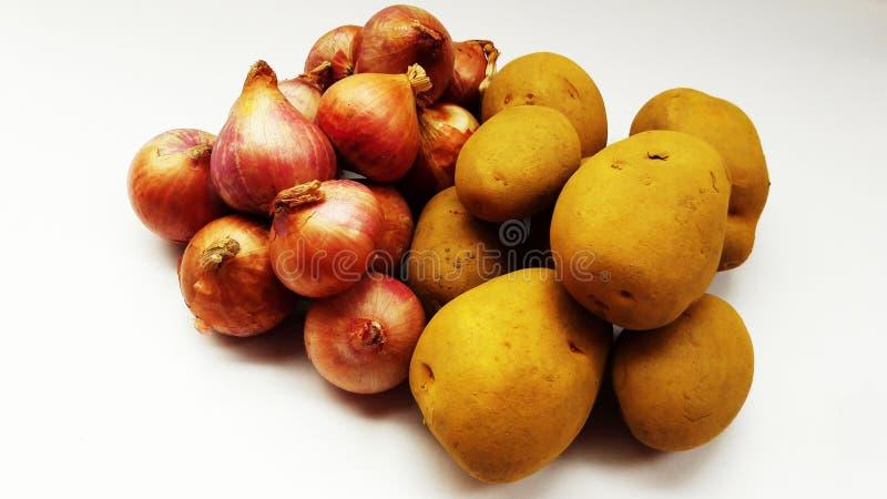Frische Zwiebel und Kartoffel lokalisiert auf weißem Hintergrundnahaufnahmebild stockbilder