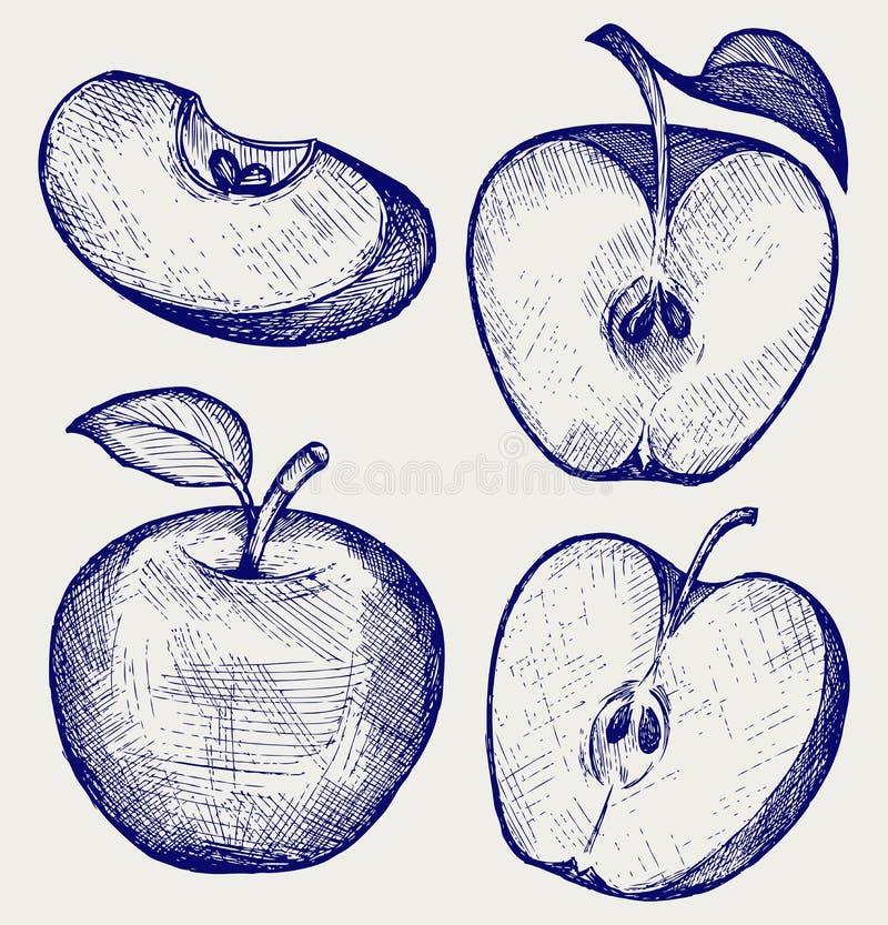 Frischer Apfel mit Blatt und Scheibe stock abbildung