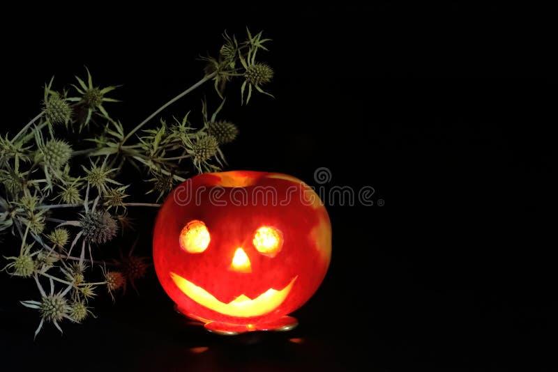 Frischer Apfelkerzenständer in der Form von Halloween-Charakter und von brennender Kerze mit trockener Distel auf schwarzem Hinte stockfoto