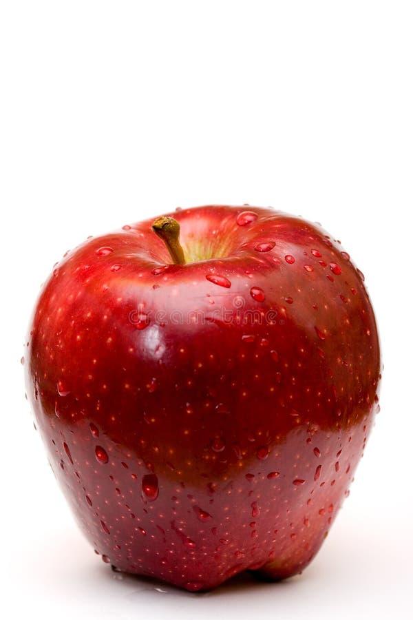 Frischer Apple stockfotografie