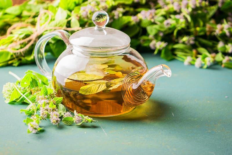 Frischer aromatischer Tee mit Melisseminzenblatt-Glasteekanne auf einem rustikalen Hintergrund Heilenkräutergetränk Horizontaler  lizenzfreies stockfoto