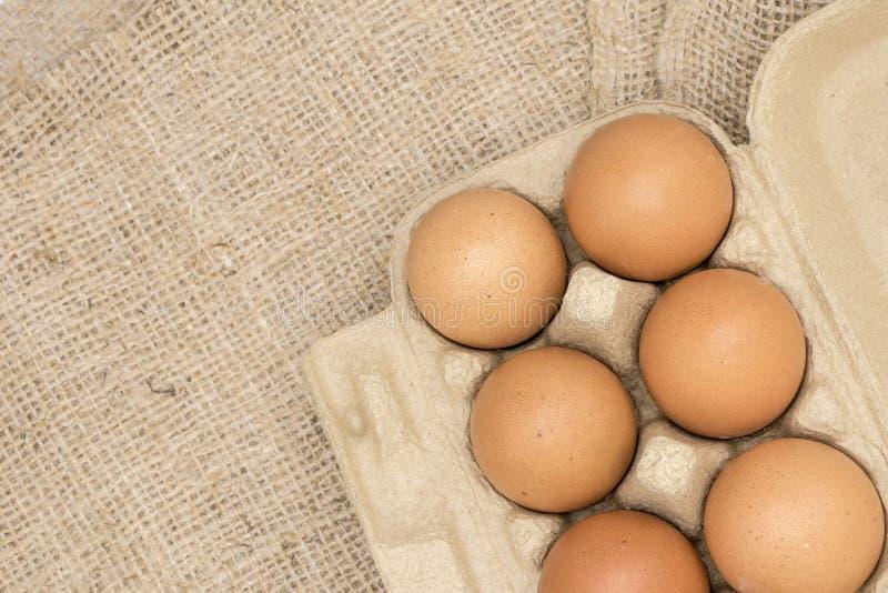 Frischer braune Eier organischer vereinbarter Leinwand-Sack lokalisiert auf weißem Hintergrund lizenzfreie stockbilder