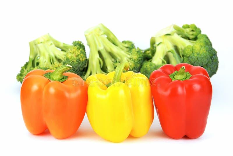 Frischer Brokkoli und bunter Pfeffer lizenzfreies stockbild