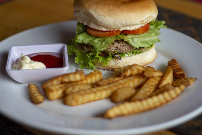 Frischer Burger mit Fleischkotelett, -pommes-Frites, -ketschup und -mayonnaise Amerikanischer Lebensmittelhamburger lizenzfreies stockfoto