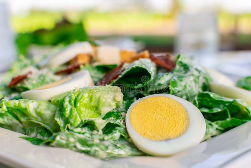 Frischer Caesar-Salat mit geschnittener gekochten sauberer und gesunder Nahrung des Eies lizenzfreies stockfoto