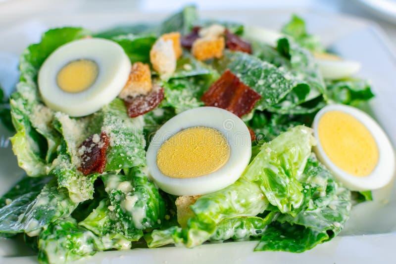 Frischer Caesar-Salat mit geschnittener gekochten sauberer und gesunder Nahrung des Eies lizenzfreie stockfotos