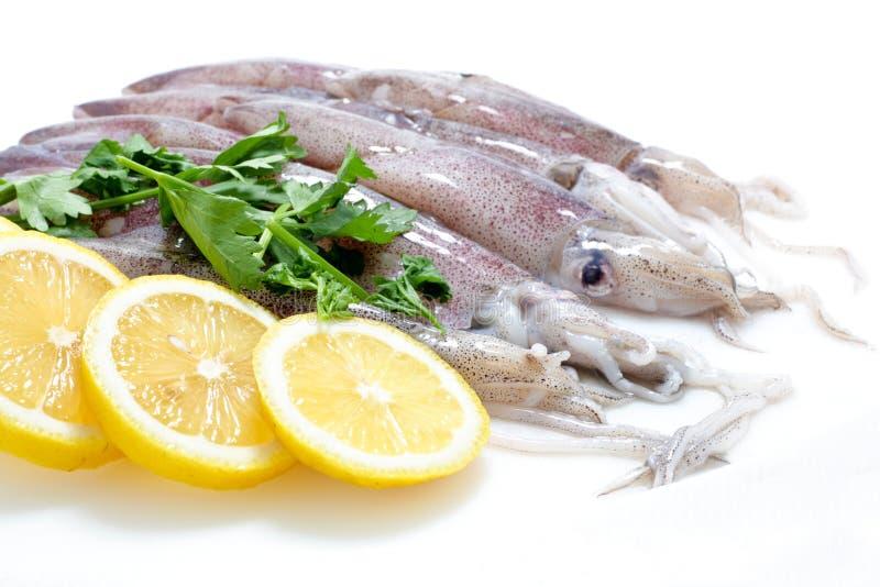 Frischer Calamari mit Zitrone stockfotos