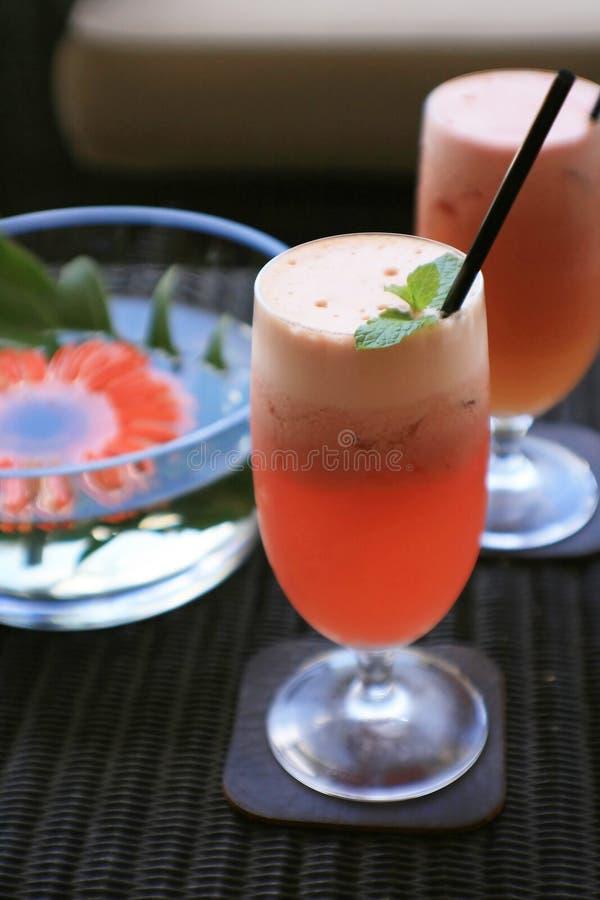 Frischer Fruchtsaft lizenzfreies stockfoto