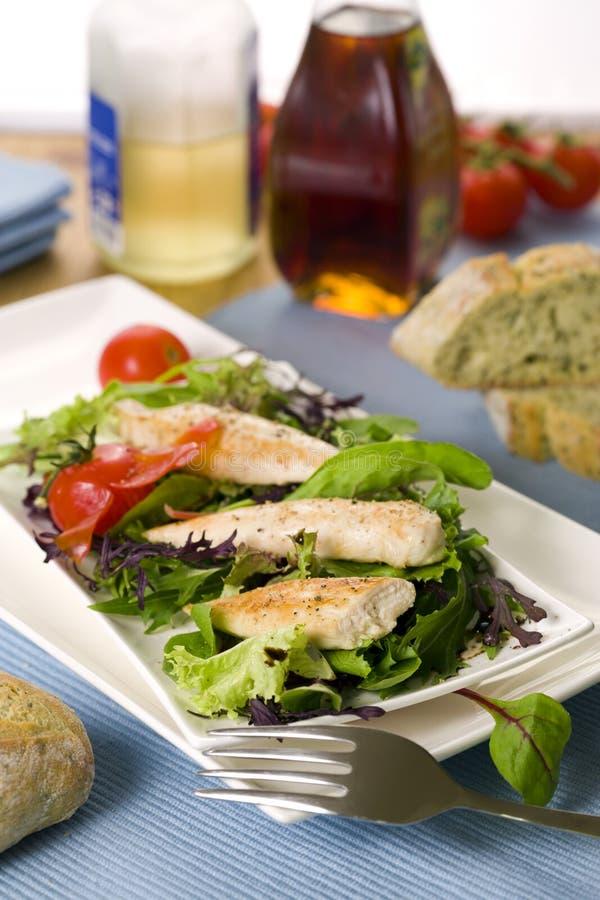 Frischer Gartensalat mit Gewinden des gegrillten Huhns lizenzfreies stockfoto