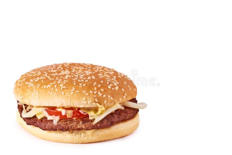 Frischer geschmackvoller Burger mit dem Käse lokalisiert auf weißem Hintergrund Schnellimbiß Cheeseburger, Kopienraumschablone lizenzfreie stockfotos