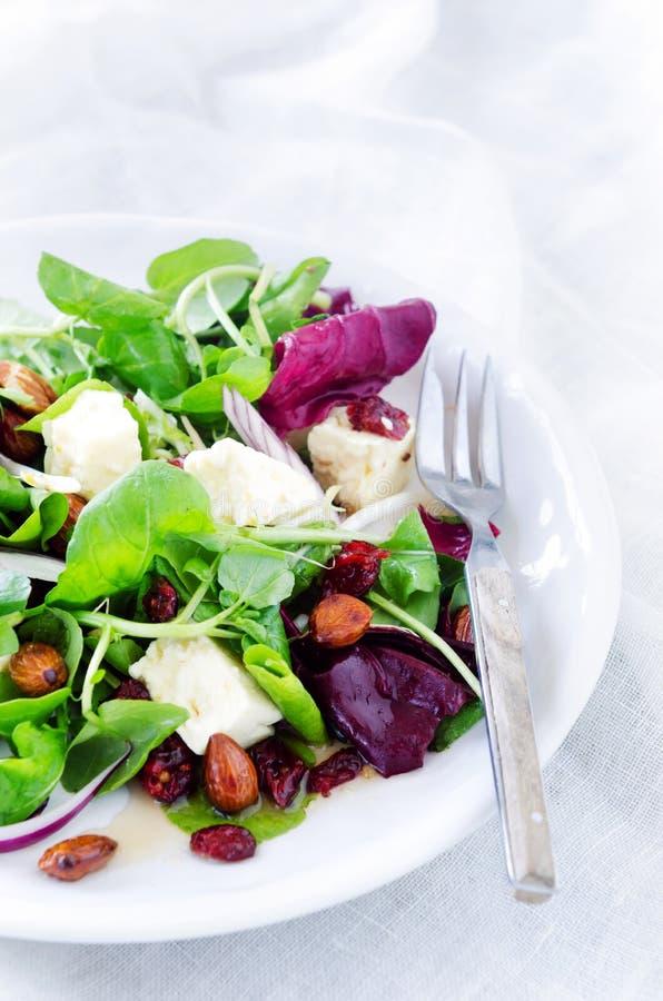 Frischer gesunder grüner Salat für Mittagessenabendessen lizenzfreie stockfotos