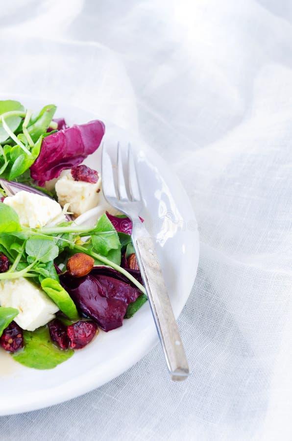 Frischer gesunder grüner Salat für Mittagessenabendessen stockbild