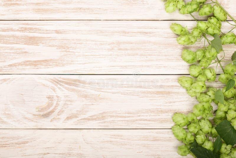 Frischer grüner Hopfen auf weißem hölzernem Hintergrund Bestandteil für Bierherstellung Draufsicht mit Kopienraum für Ihren Text lizenzfreie stockfotografie