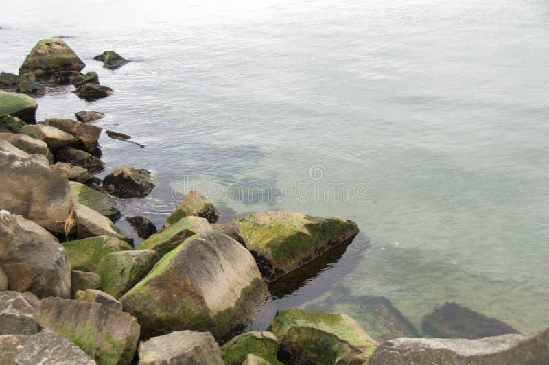Frischer grüner Ozean stockfoto