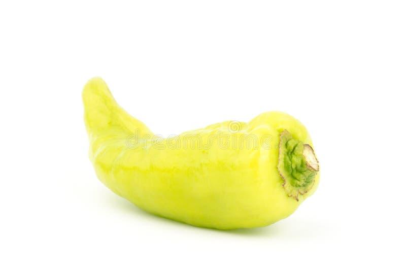 Frischer grüner Pfeffer stockbild