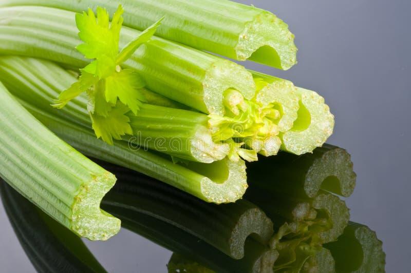 Frischer grüner Sellerie stockfoto