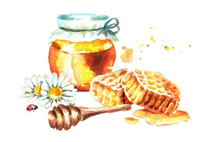 Frischer Honig mit Bienenwaben-, Kamillen- und Honigschöpflöffel Gezeichnete Illustration des Aquarells Hand vektor abbildung