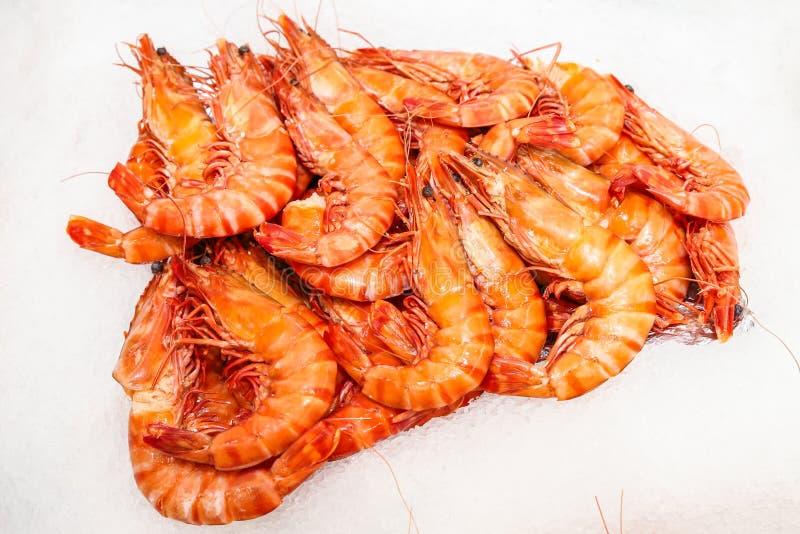Frischer Kalmar auf Eis lizenzfreies stockbild