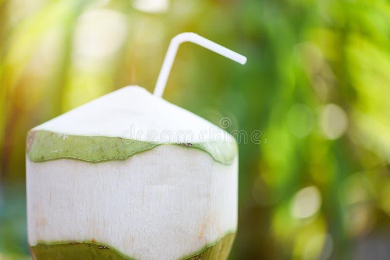 Frischer Kokosnusssaft, der junge Kokosnussfrucht auf Sommernatur-Grünhintergrund trinkt stockbild