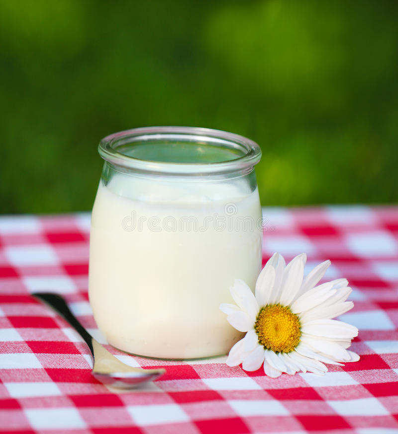 Frischer natürlicher Joghurt in einem Glasglas stockbilder