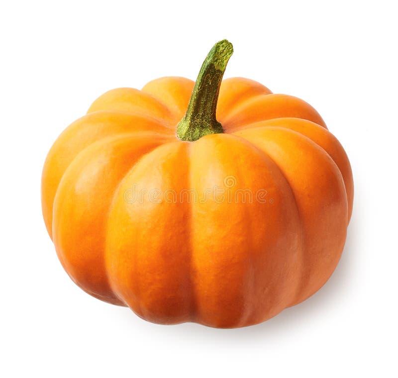 Frischer orange Kürbis lokalisiert auf weißem Hintergrund lizenzfreie stockfotografie