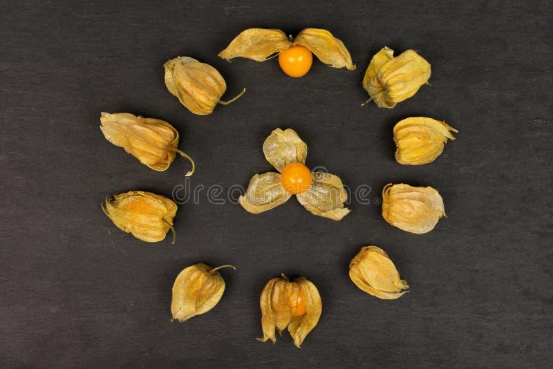 Frischer orange Physalis auf grauem Stein lizenzfreies stockbild