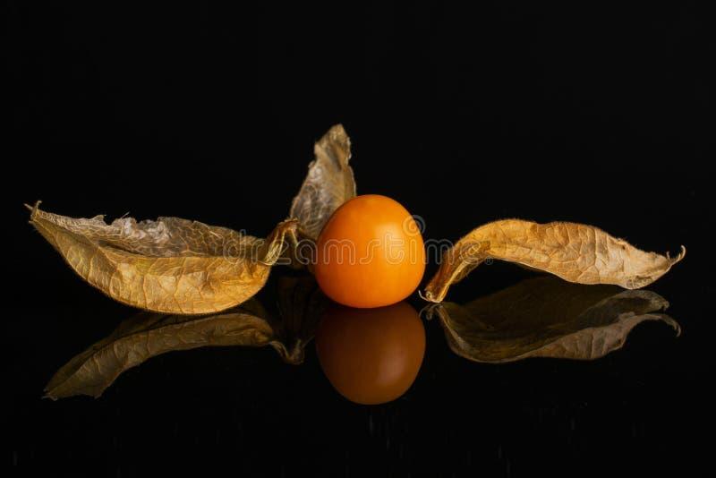 Frischer orange Physalis lokalisiert auf schwarzem Glas lizenzfreie stockbilder