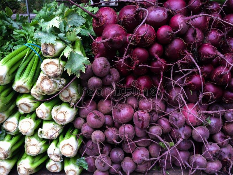 Frischer organischer Sellerie und Rote-Bete-Wurzeln an Landwirte Markt lizenzfreie stockfotografie