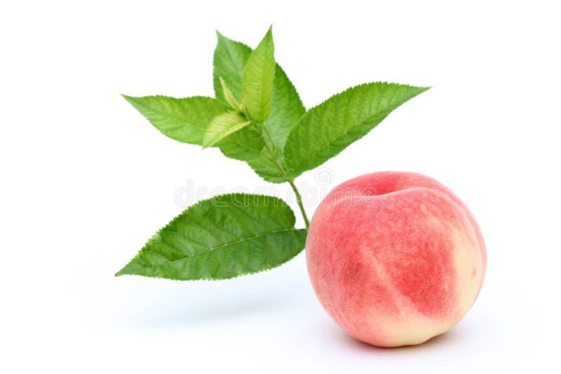 Frischer Pfirsich und Blätter lizenzfreie stockfotografie