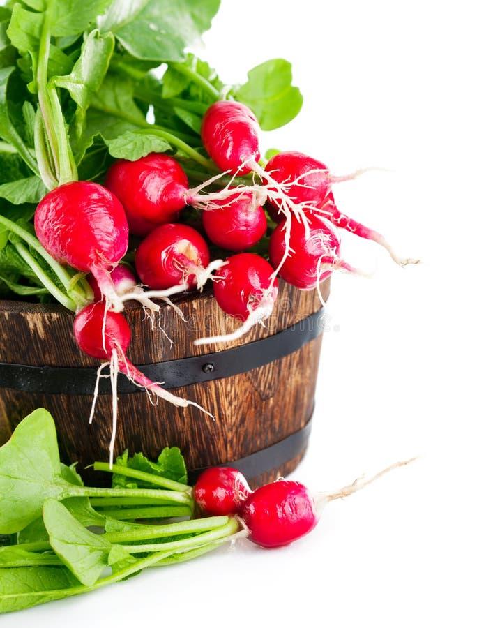 Frischer Rettich des Gemüses im hölzernen Eimer lizenzfreie stockfotografie