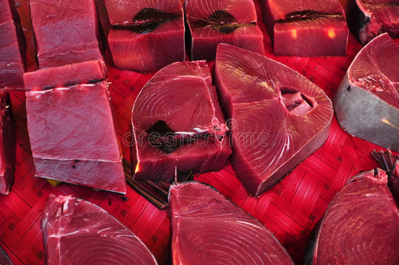 Frischer roher Thunfisch (Thunnus albacares) stockbild