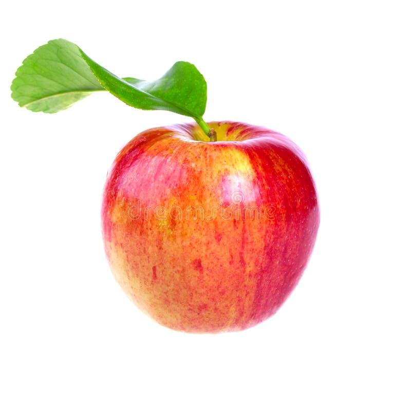 Frischer roter Apfel mit Blatt lizenzfreie stockfotografie