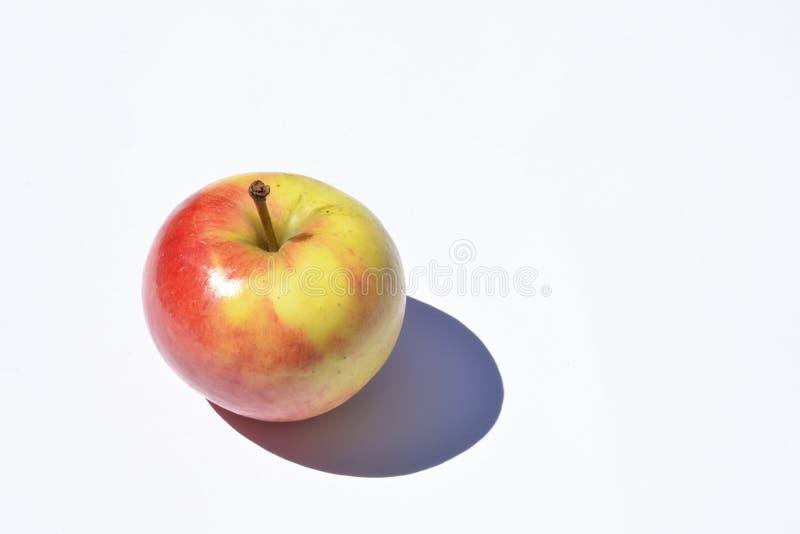 Frischer roter und gelber Apfel im Sonnenlicht mit Schattenreflexionseffekt und einem leeren Kopienraumhintergrund lizenzfreie stockfotografie