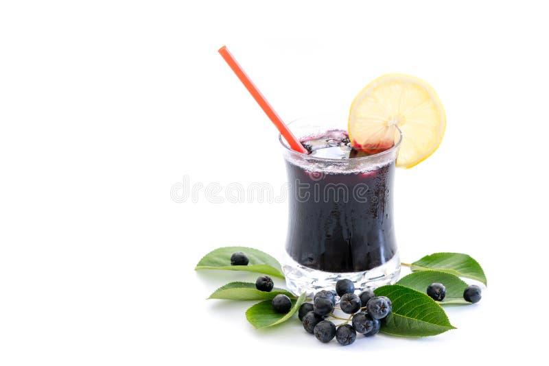 Frischer Saft von Chokeberry Aronia-melanocarpa im Glas und Beere und Blätter nahe, lokalisiert auf Weiß lizenzfreies stockbild